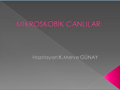 MerveGünay